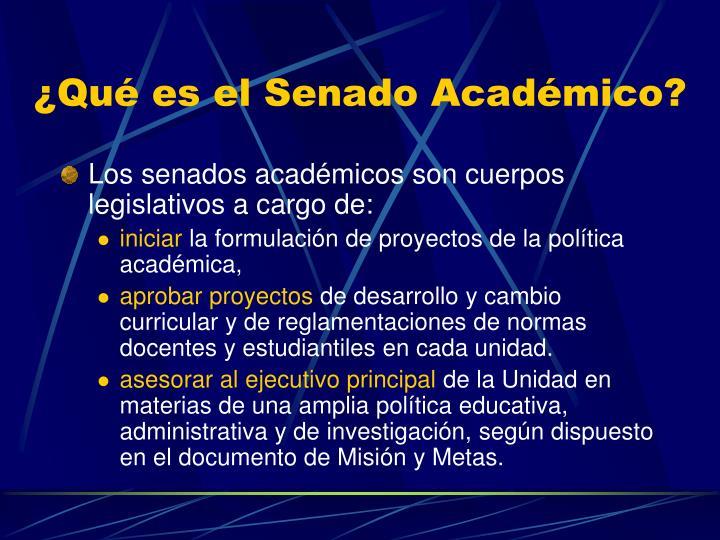 ¿Qué es el Senado Académico?