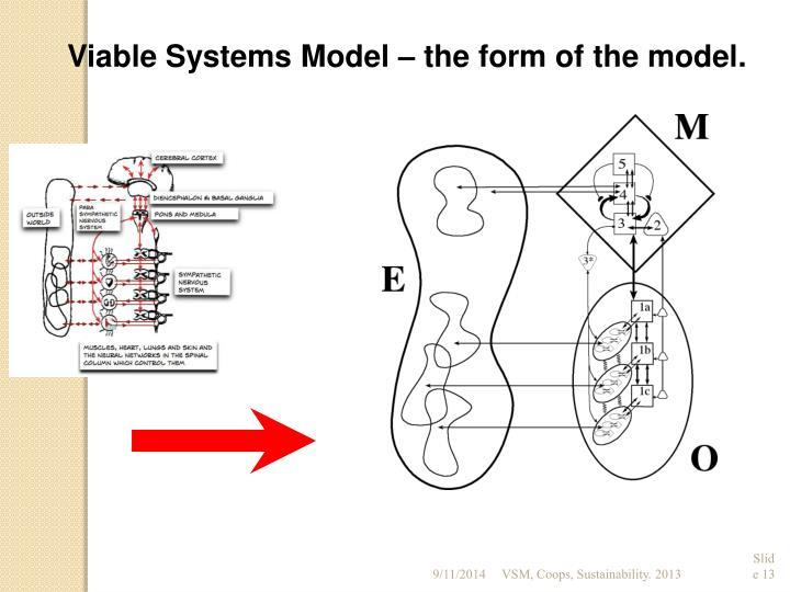 Viable Systems Model – the form of the model.
