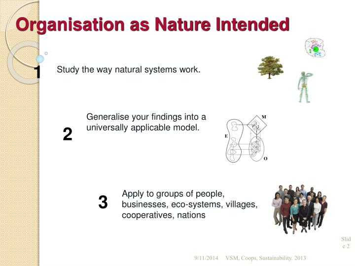 Organisation as Nature Intended