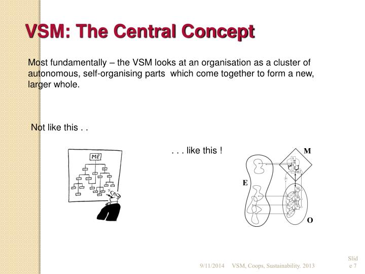 VSM: The Central Concept