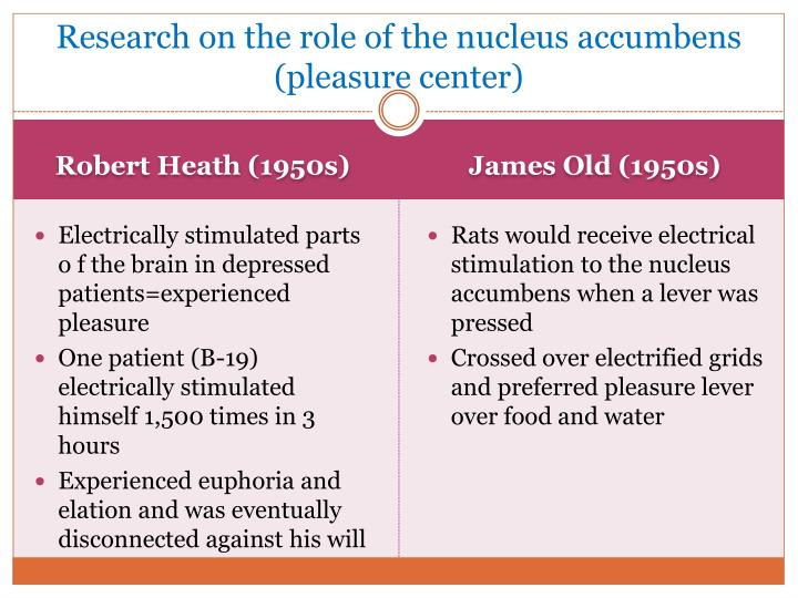 Research on the role of the nucleus