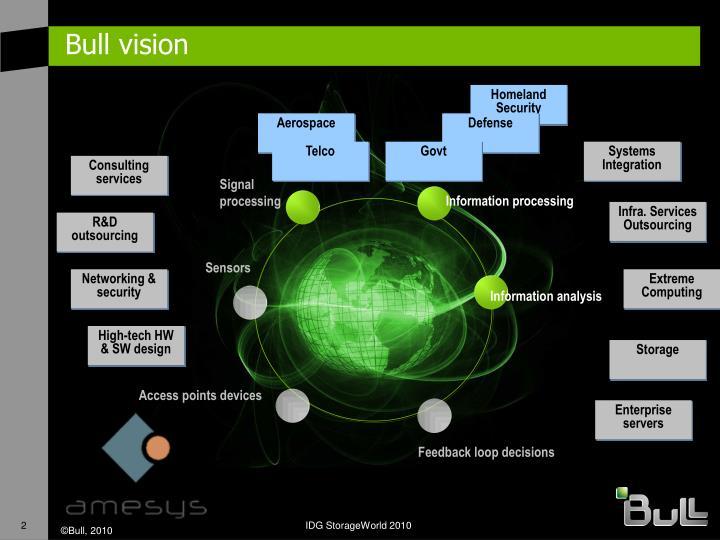 Bull vision