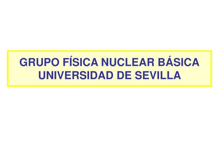GRUPO FÍSICA NUCLEAR BÁSICA
