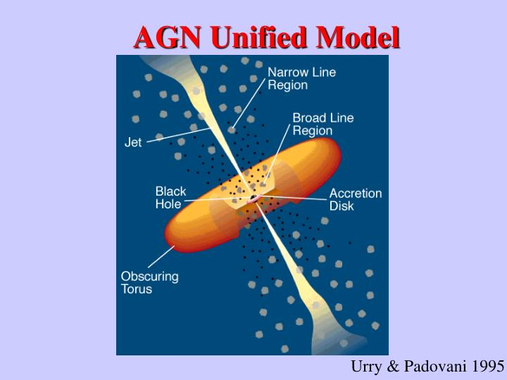 AGN Unified Model