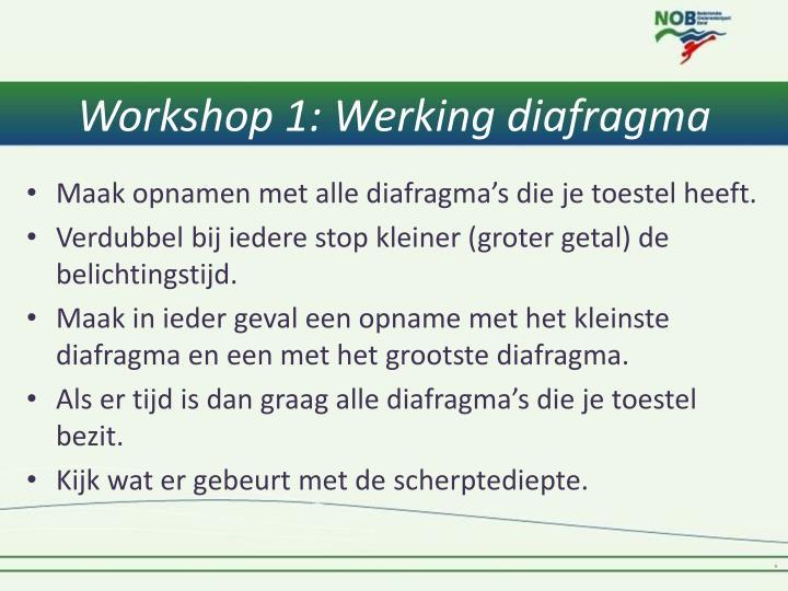 Workshop 1: Werking diafragma