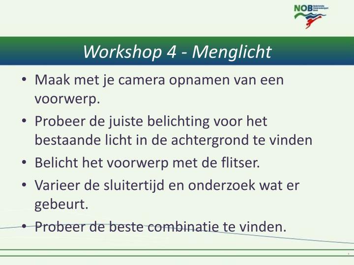 Workshop 4 - Menglicht