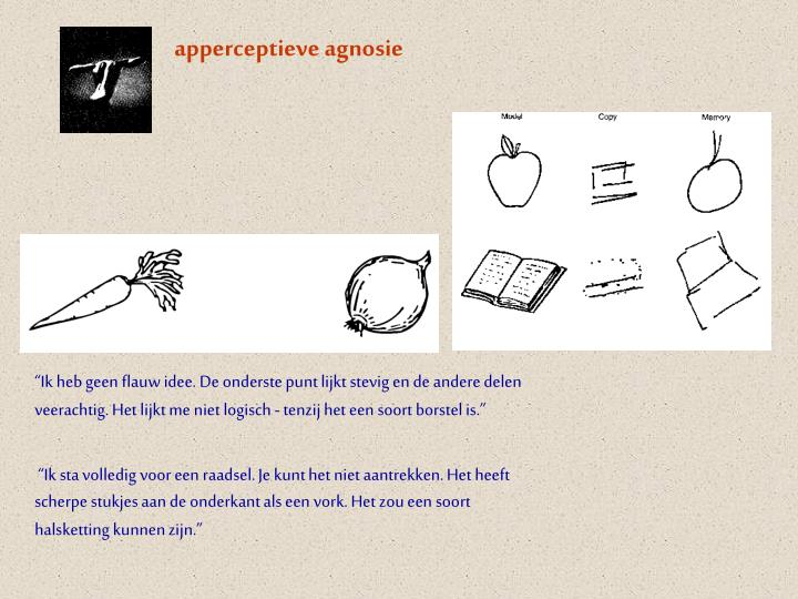 apperceptieve agnosie