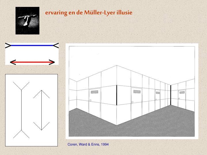 ervaring en de Müller-Lyer illusie
