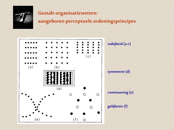 Gestalt-organisatiewetten: