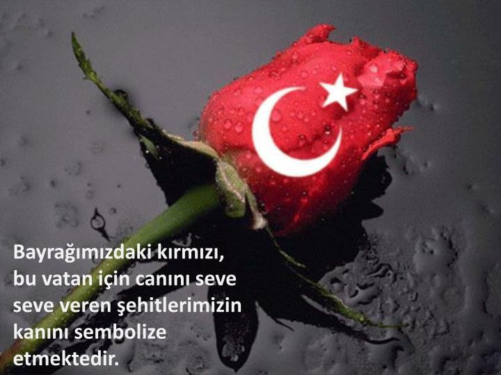 Bayrağımızdaki kırmızı, bu vatan için canını seve seve veren şehitlerimizin kanını sembolize etmektedir.