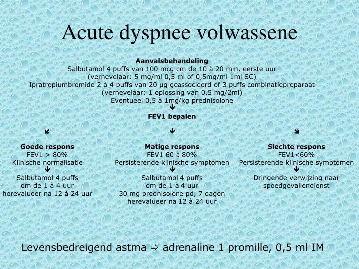 Acute dyspnee volwassene