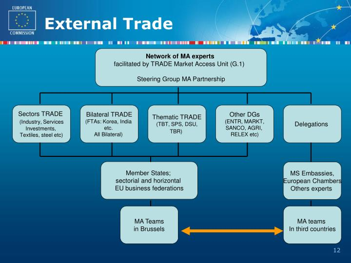 Network of MA experts