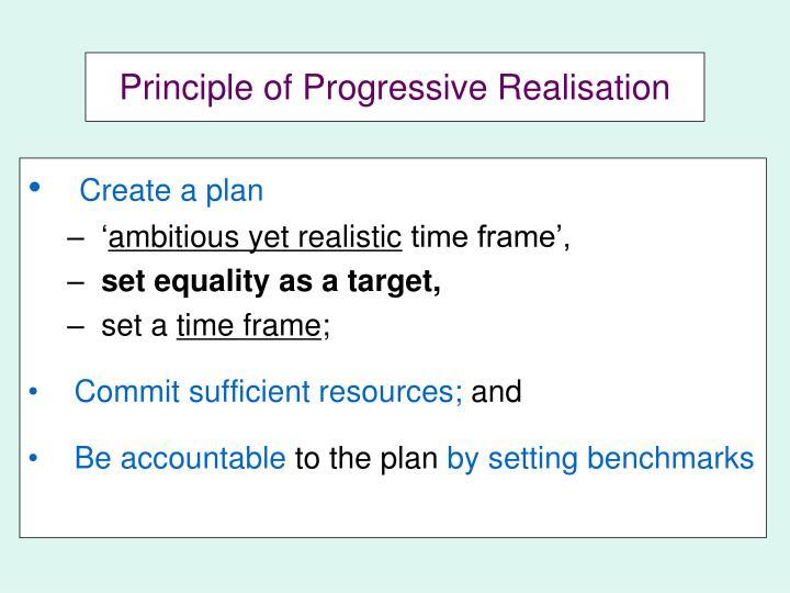 Principle of Progressive Realisation