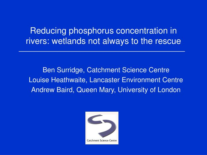 Reducing phosphorus concentration in rivers wetlands not always to the rescue