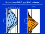subsurface mrp and fe 2 release