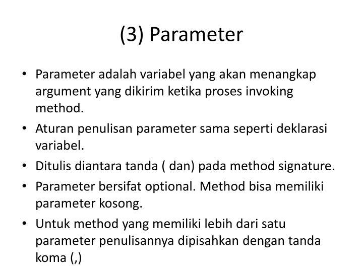 (3) Parameter