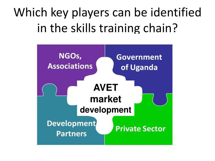 Which key players can be identified in the skills training chain?
