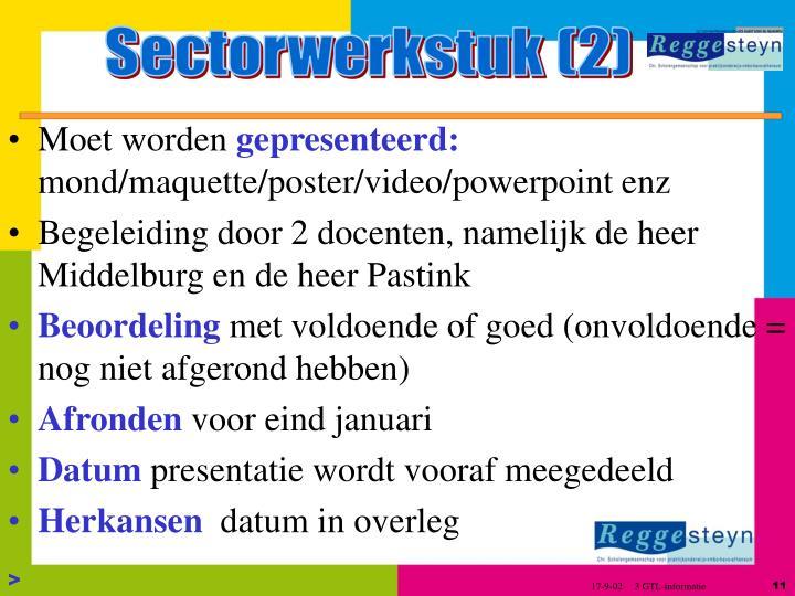 Sectorwerkstuk (2)