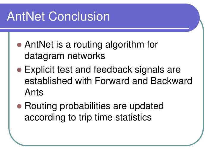 AntNet Conclusion