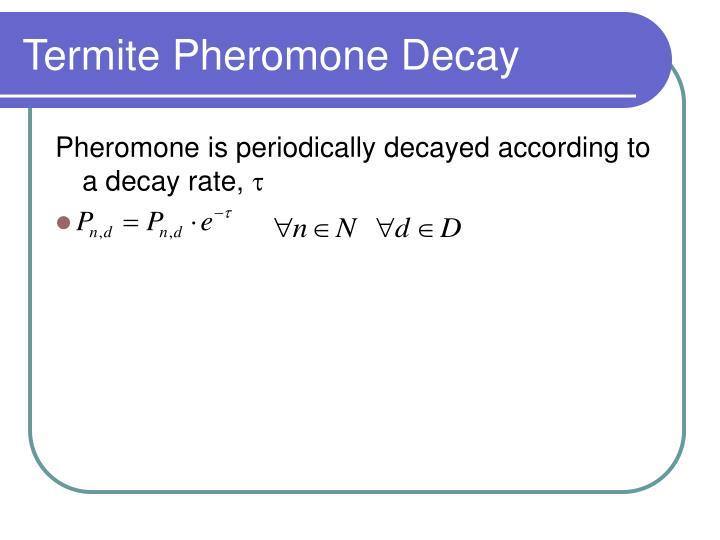 Termite Pheromone Decay