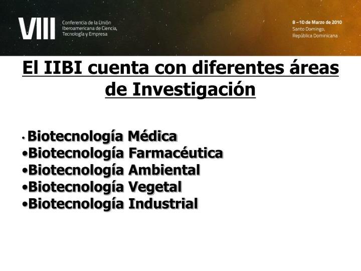 El IIBI cuenta con diferentes áreas de Investigación