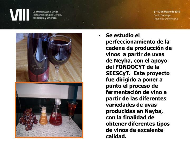 Se estudio el perfeccionamiento de la cadena de producción de vinos  a partir de uvas de Neyba, con el apoyo del FONDOCYT de la SEESCyT.  Este proyecto fue dirigido a poner a punto el proceso de fermentación de vino a partir de las diferentes variedades de uvas producidas en Neyba, con la finalidad de obtener diferentes tipos de vinos de excelente calidad.