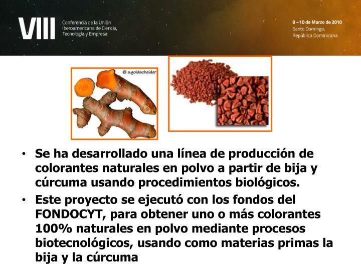Se ha desarrollado una línea de producción de colorantes naturales en polvo a partir de bija y cúrcuma usando procedimientos biológicos.