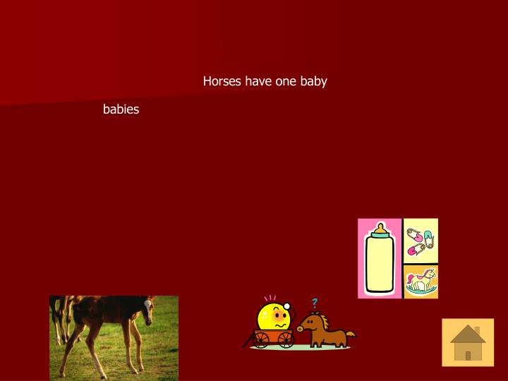 Horses have one baby