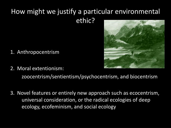 How might we justify a particular environmental ethic
