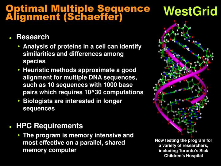 Optimal Multiple Sequence