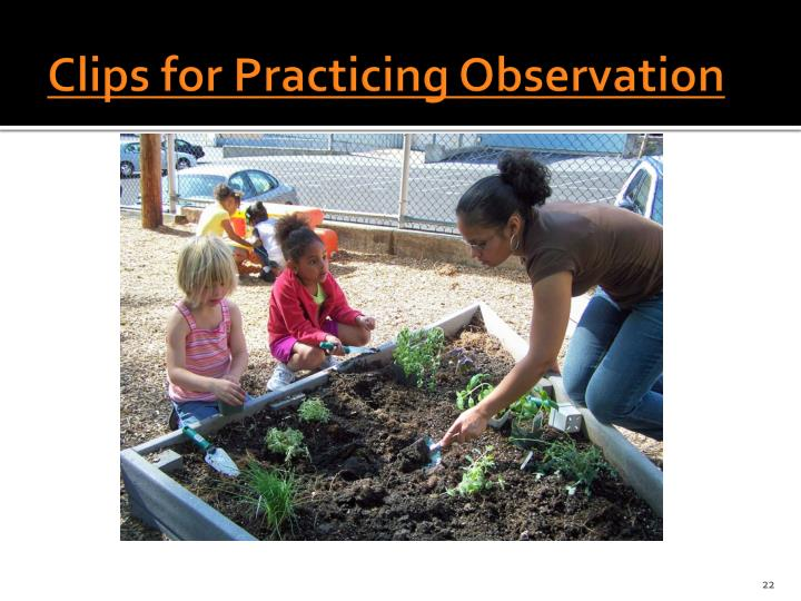 Clips for Practicing Observation