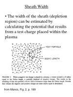 sheath width1
