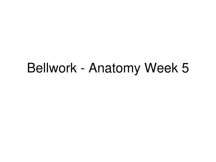 Bellwork anatomy week 5