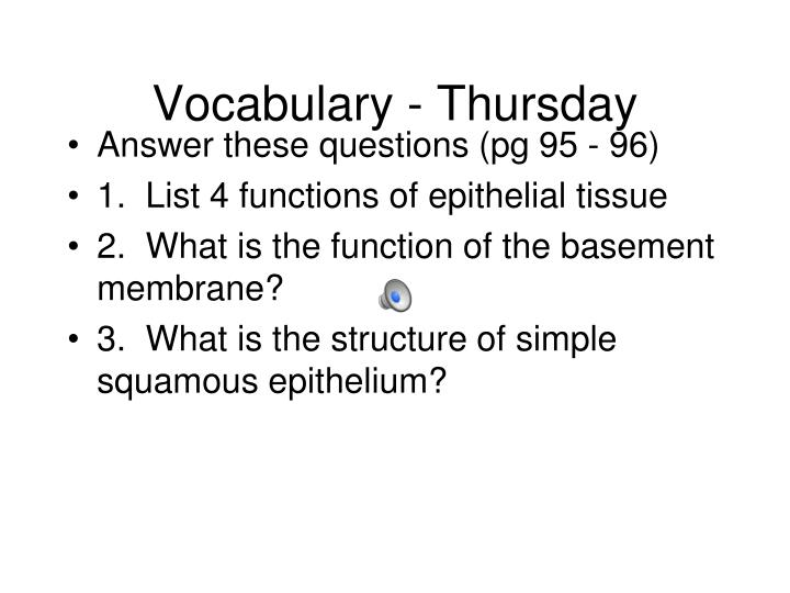 Vocabulary - Thursday
