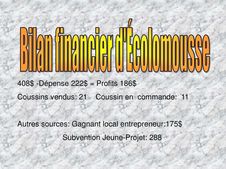 Bilan financier d'Écolomousse