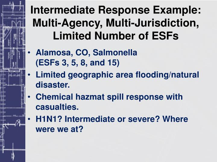 Intermediate Response Example: Multi-Agency, Multi-Jurisdiction, Limited Number of ESFs
