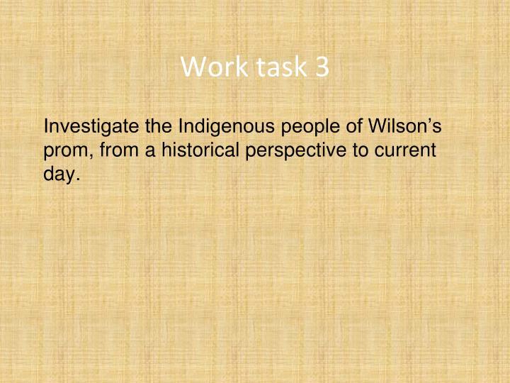 Work task 3