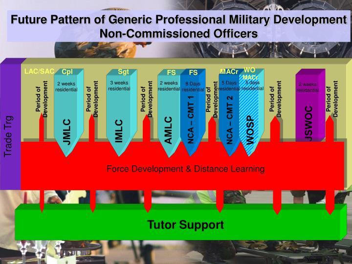 Future Pattern of Generic Professional Military Development