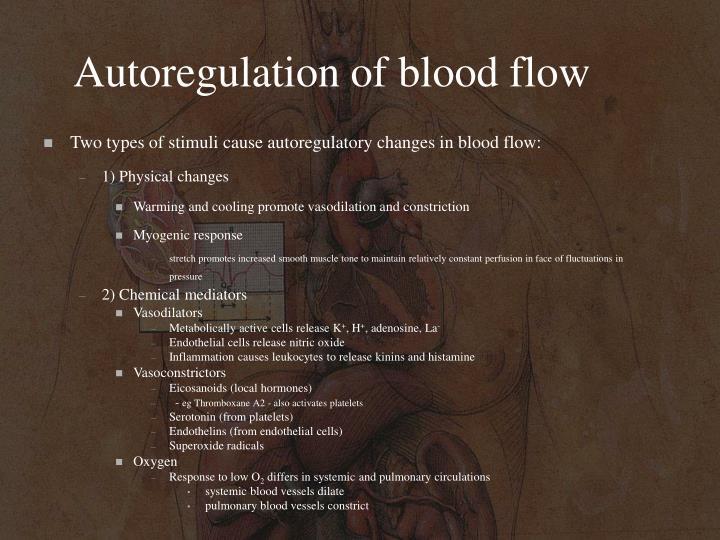 Autoregulation of blood flow