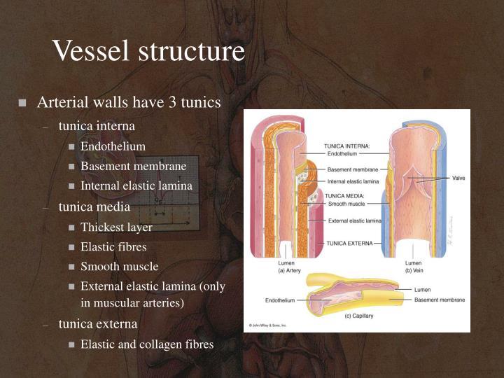Vessel structure