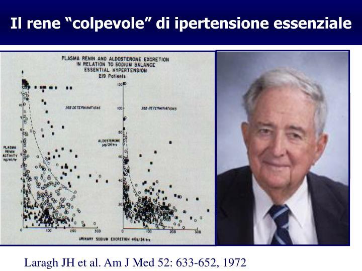 "Il rene ""colpevole"" di ipertensione essenziale"
