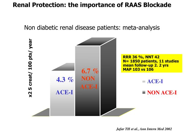Renal Protection: the importance of RAAS Blockade