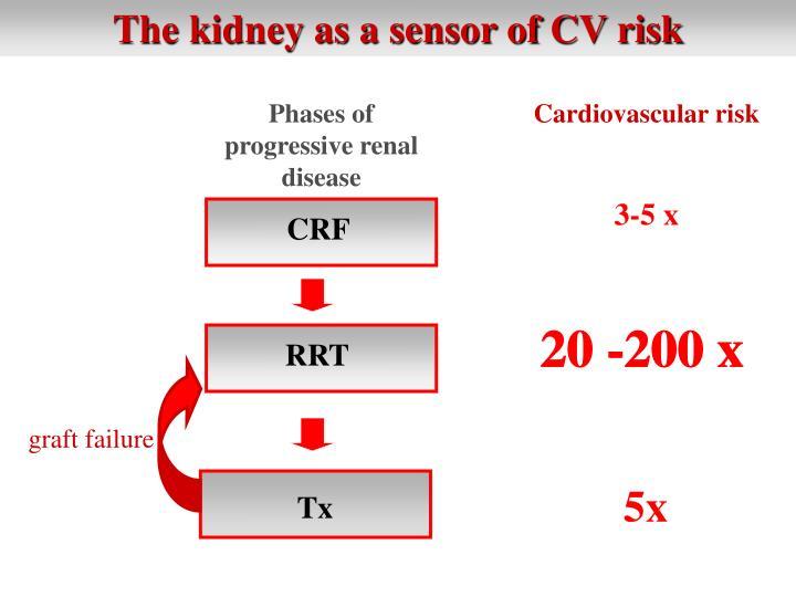 The kidney as a sensor of CV risk