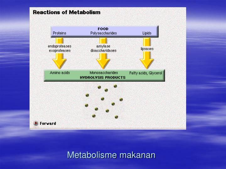 Metabolisme makanan