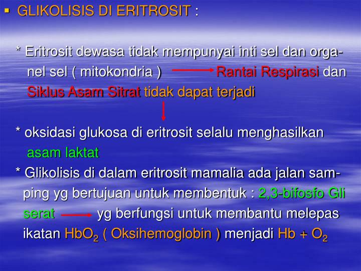 GLIKOLISIS DI ERITROSIT