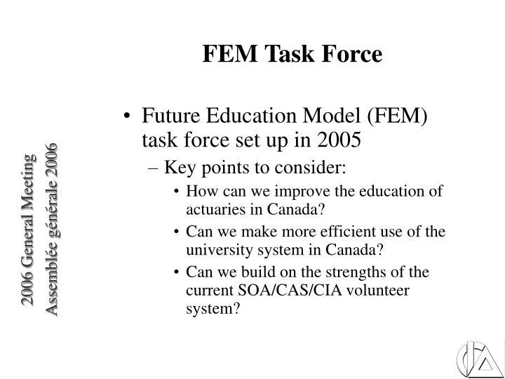 FEM Task Force