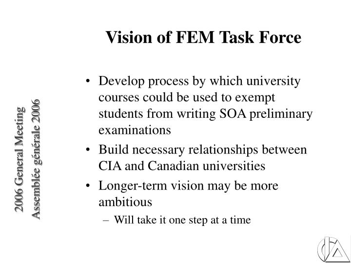 Vision of FEM Task Force