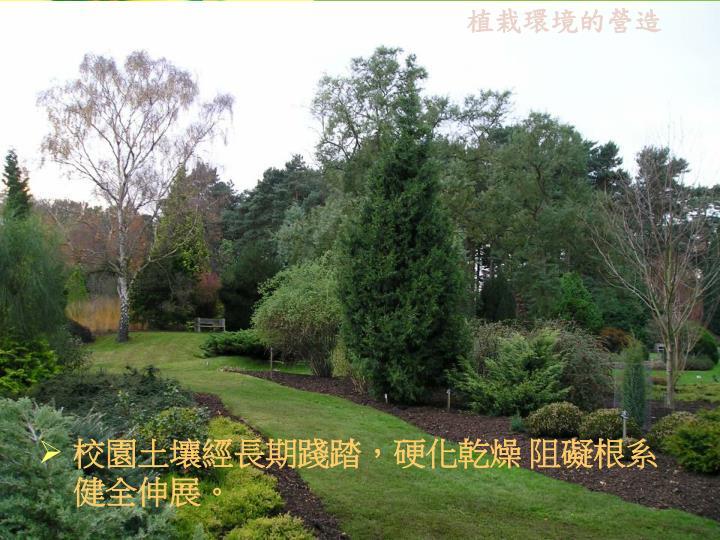 植栽環境的營造