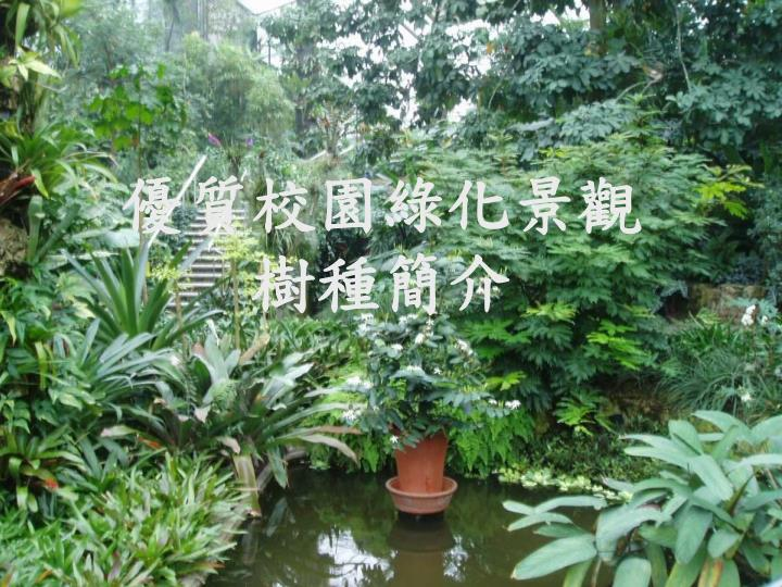 優質校園綠化景觀樹種簡介