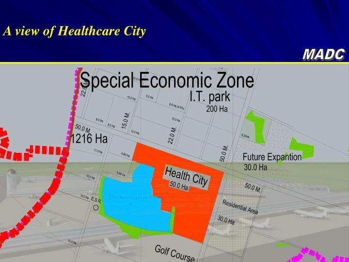 A view of Healthcare City